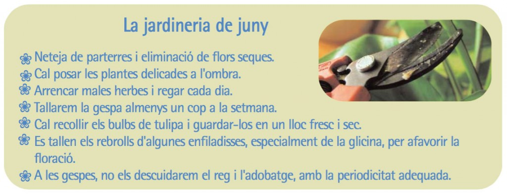 Jardineria_Juny_Guia