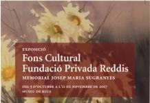 Fundació Privada Reddis