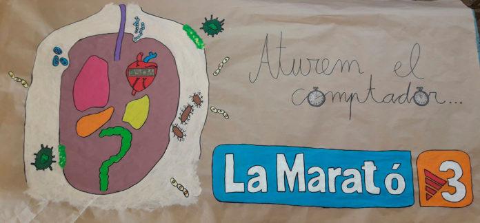 La Diputació de Tarragona dóna suport a la Marató de TV3