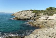 """""""Arran de mar"""" per Ester Borràs Giol"""