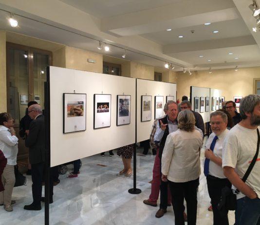 XXV Biennal Internacional de Fotografia de l'Esport