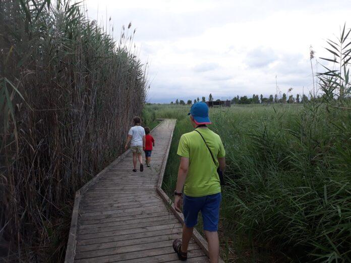 Els caps de setmana, visites a l'espai natural de la Sèquia Major de Vila-seca