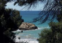 Fotografia de Mar Sardà